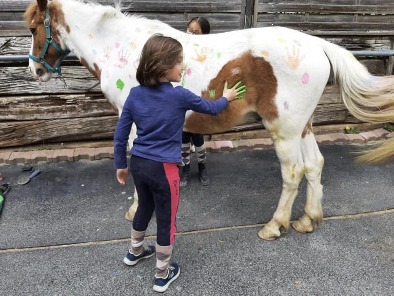 Pony Grenchen 768x577